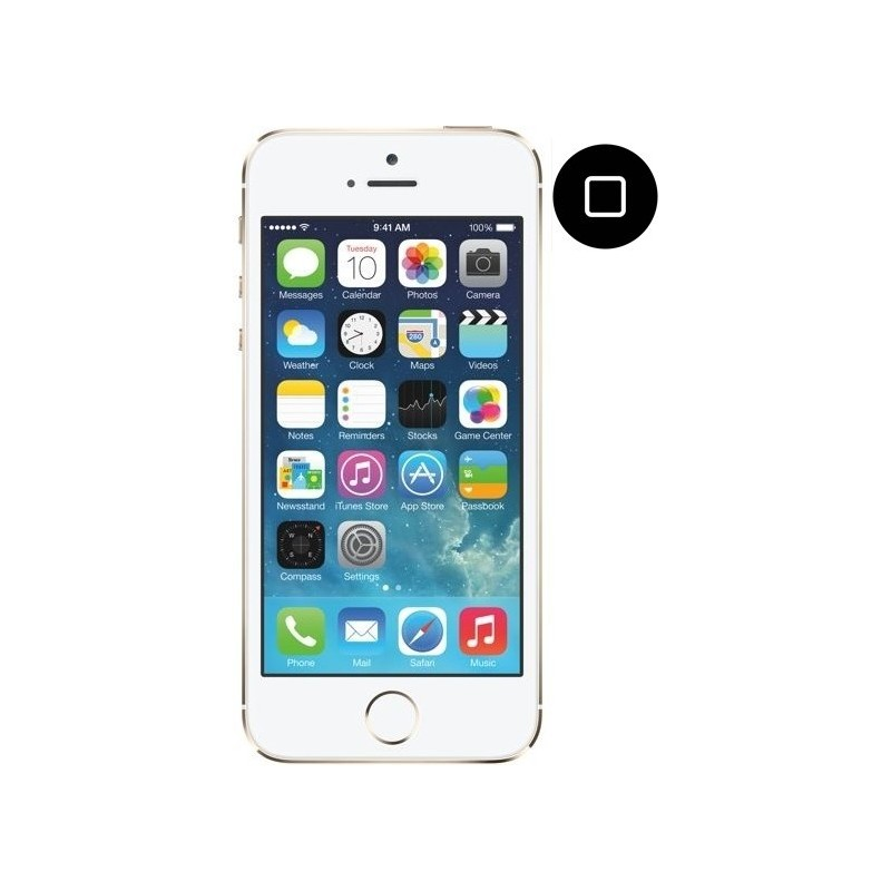 Cambiar Boton Home iPhone 5s